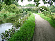 A pipe bridge crosses the little-used stretch of canal