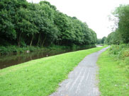 Decent towpath again, but it gets muddier further on